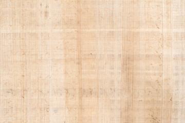 Fine antique papyrus as background, paper texture