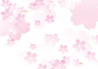 可愛い色桜 白