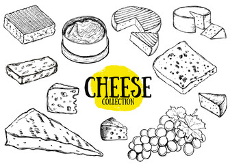 Cheese collection. Hand drawn illustration