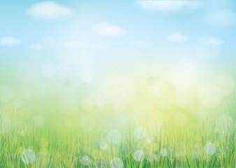 Vector summer nature  background, blurred effect.