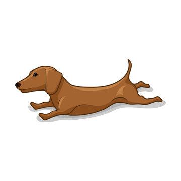 Stretching Weiner dog vector illustration