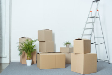 cardboard boxes, ladder and potted plants in empty room during relocation