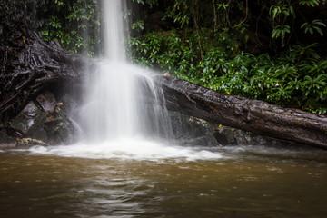 Timber in waterfall