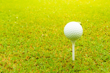 Golf ball on the green with tee, Close up.