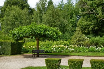 Cheverny, Loire Valley, France. 26 June 2017. The park of the castle estate, all the plants are extremely well kept.