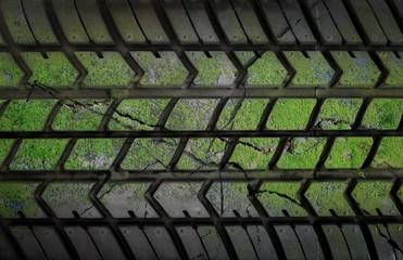 grunge tire with lichen covered texture background