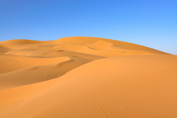 Wydmy Erg Chebbi. Sahara