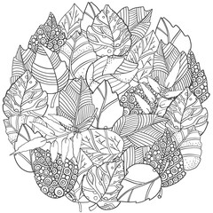 Floral doodle circle pattern in vector with autumn leaves. Design Asian, ethnic, zentangle, tribal pattern. Black and white. Coloring book.