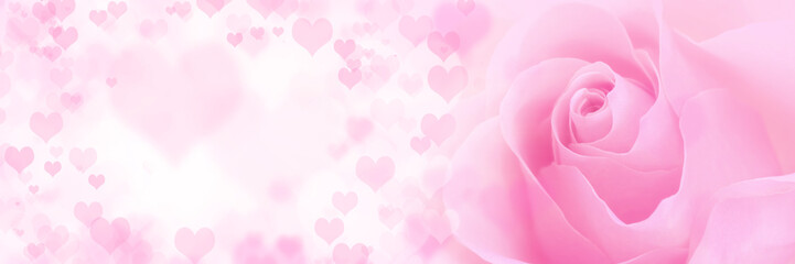 Pink rose with hearts background