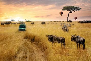 Dreamy African Wildlife Safari Scene Wall mural