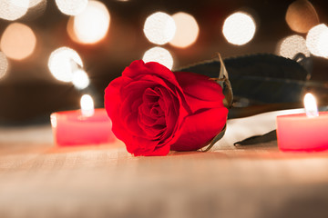 Closeup of red rose in a romantic setting.