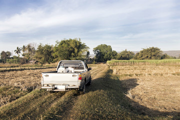 truck on field in rural agriculture life