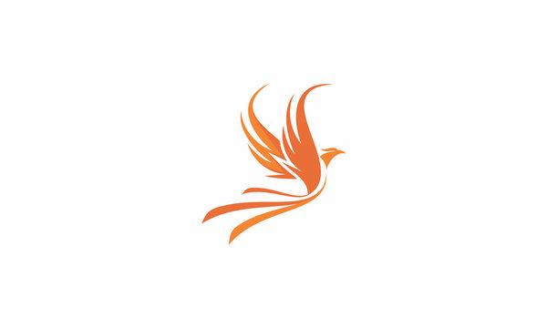 phoenix, sun, bird, fire, fly, emblem symbol icon vector logo
