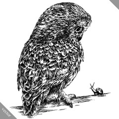 black and white engrave isolated owl vector illustration