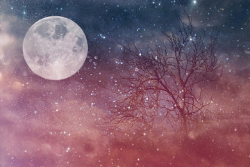 Surreal fantasy concept - lonely tree with bare branches and full moon with stars glitter in night skies background. Vintage style filtered image.