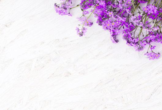Beautiful Spring Flower background