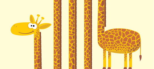 Giraffe with long neck. vector illustration.