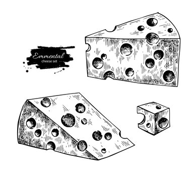 Emmental cheese drawing. Vector hand drawn food sketch. Engraved triangle slice and cube cut.