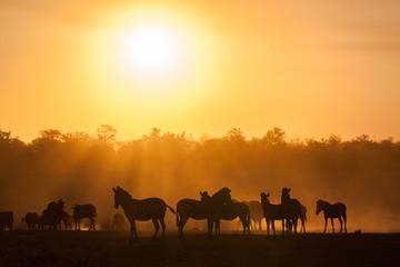 Sunset at kruger national park, South Africa