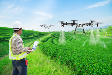 Technician farmer use wifi computer control agriculture drone fly to sprayed fertilizer on the green tea fields, Smart farm 4.0 concept