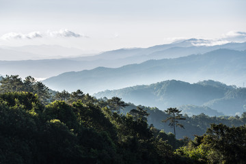 Scenic hazy mountains range covered by fog in the morning. Tropical green tree touching sunlight from clear white sky.
