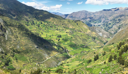 View of fields in the way to Huanuco, Peru