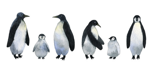 Penguins. Collection of adults penguins with cute baby penguins. Watercolor hand drawn illustration isolated on white background