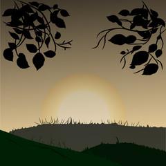 Vector summer sunset illustration
