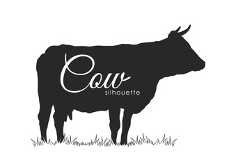 Hand drawn Cow Silhouette Isolated on white background