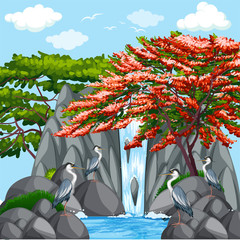 Background scene with birds by the waterfall