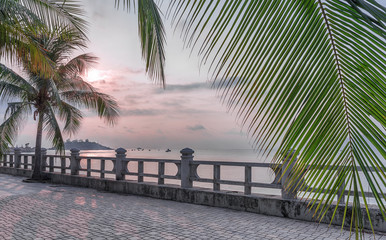 Vietnam, Nha Trang, May 2, 2015. Early morning, small fog and palm trees on the waterfront.