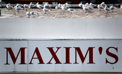 Seagulls perch on top of a restaurant boat during flooding in Paris