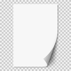 Vector white realistic paper page with curled corner.