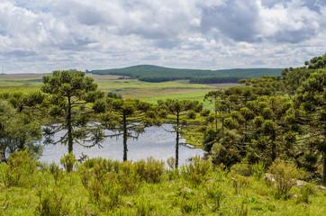 Landscape of the gaucho mountain range, araucarias, mountains and rivers. City of Bom Jesus, São José dos Ausentes.