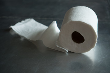 a roll of toilette paper, plain