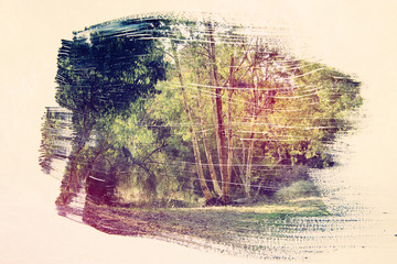 dreamy and abstract image of the forest. double exposure effect with watercolor brush stroke texture.