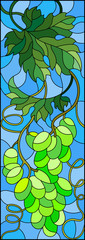 The illustration in stained glass style painting with a bunch of green grapes and leaves on blue background,vertical image