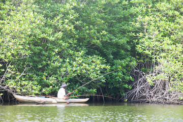 Madu Ganga, Balapitiya, Sri Lanka - DECEMBER 2015 - An older fisherman trying to catch some fish on Maduganga lake