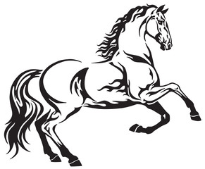Horse  tribal tattoo. Black and white side view vector illustration