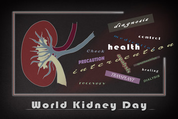 Informative poster of the world kidney day with relative words
