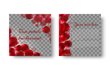 Template greeting card with red rose petals and bright sparkles on a transparent background.