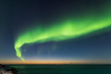 Northern lights, Uttakleiv, Lofoten islands, Norway