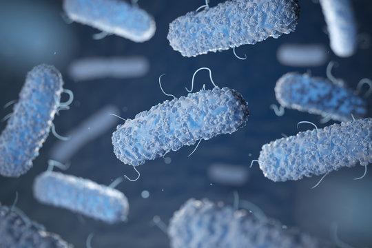 Enterobacterias. Gram-negative bacterias escherichia coli, salmonella, klebsiella, legionella, mycobacterium tuberculosis, yersinia pestis,  and shigella. 3d illustration