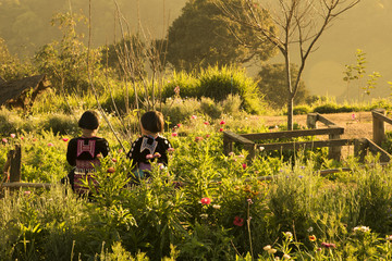 The tribal kids are friends and be together in beautiful warm light life in Northern of Thailand.
