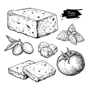 Greek feta cheese block, slice drawing. Vector hand drawn food s
