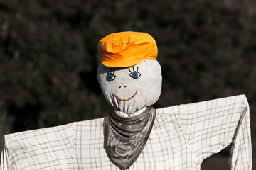 Scarecrow with a Cap and Scarf Scaring Unwanted Birds Away