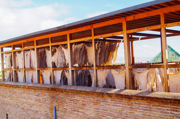 Leather drying in the tannery at ancient medina of Fes