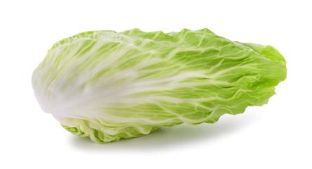 sugarloaf lettuce