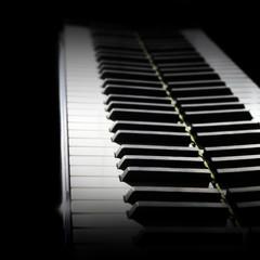 Piano keyboard. Grand piano keys