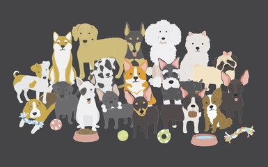Illustration o animals